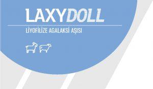 Laxydoll