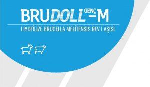 Brudoll-M Genç