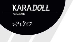 Karadoll